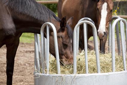 Heunetze und Raufen für Pferde