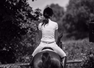 ohne Angst reiten