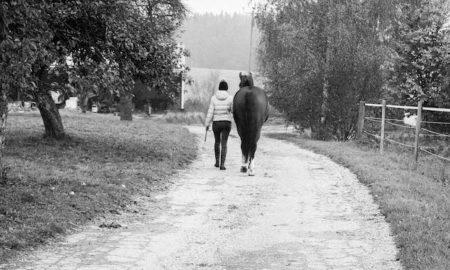 Spaziergang mit dem Pferd
