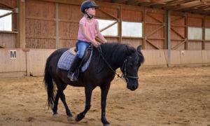 Mein Kind möchte reiten lernen: Was sollte ich beachten?