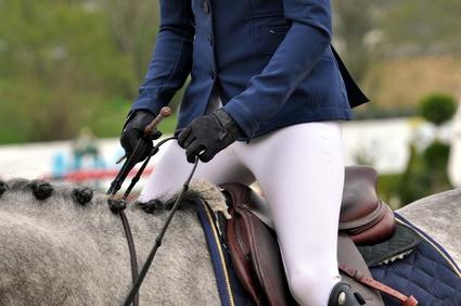 Wie finde ich den richtigen Pferdesattel?